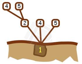 Langkah ke 3 - Pohon Permutasi