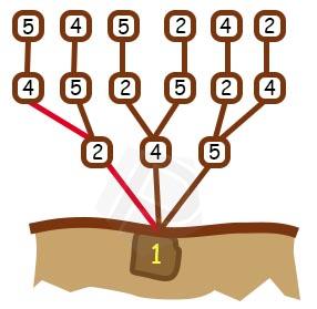 Langkah ke 5 - Pohon Permutasi